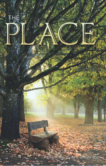 154e562535a6f9---The Place Cover